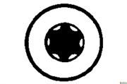 2 инструментальные насадки Torsion Torx, 8/25 мм, Metabo, 624429000